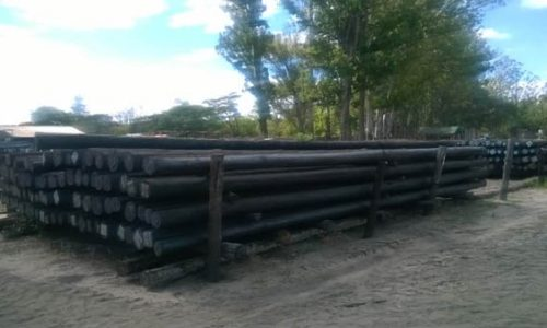 Treated Poles Transmission Poles